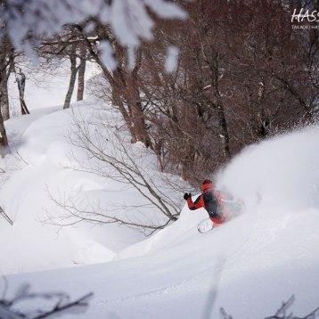 photo : TAKASHI IWATO