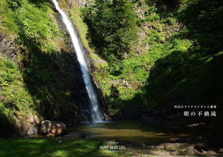 朝の不動滝